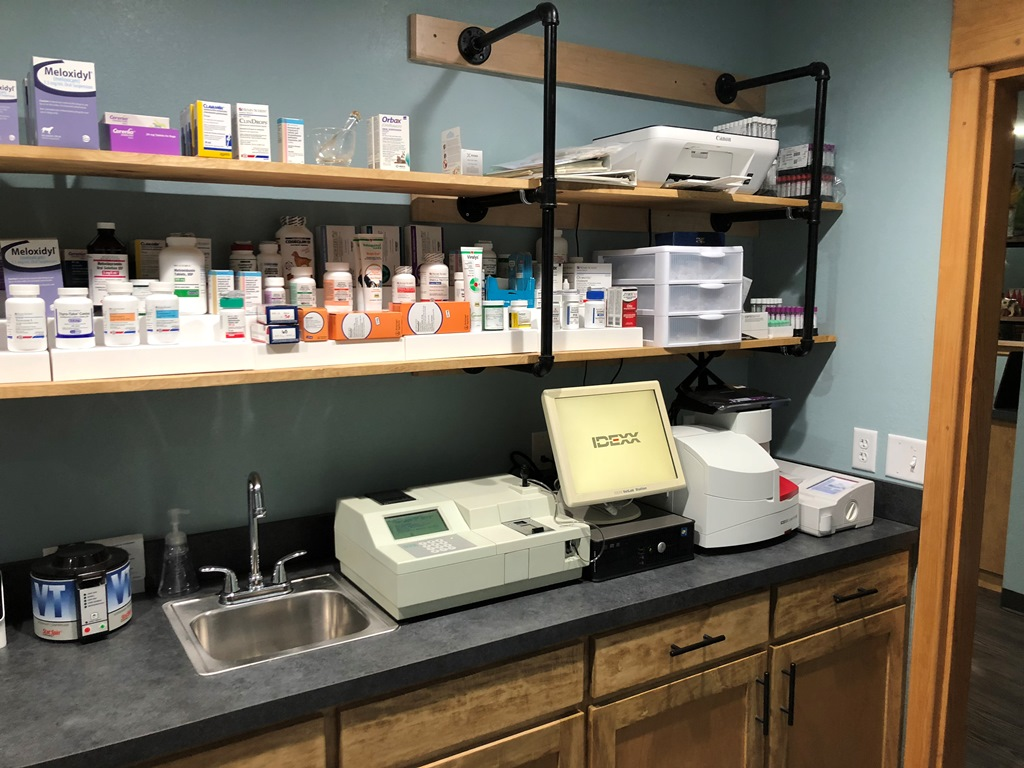 Aledo Lab 1