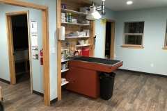 Aledo Treatment room